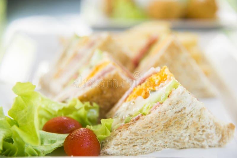 Здоровый сэндвич сделанный из свежего салата и сэндвичей томата, вкусных и свежих на белой предпосылке плиты стоковые изображения