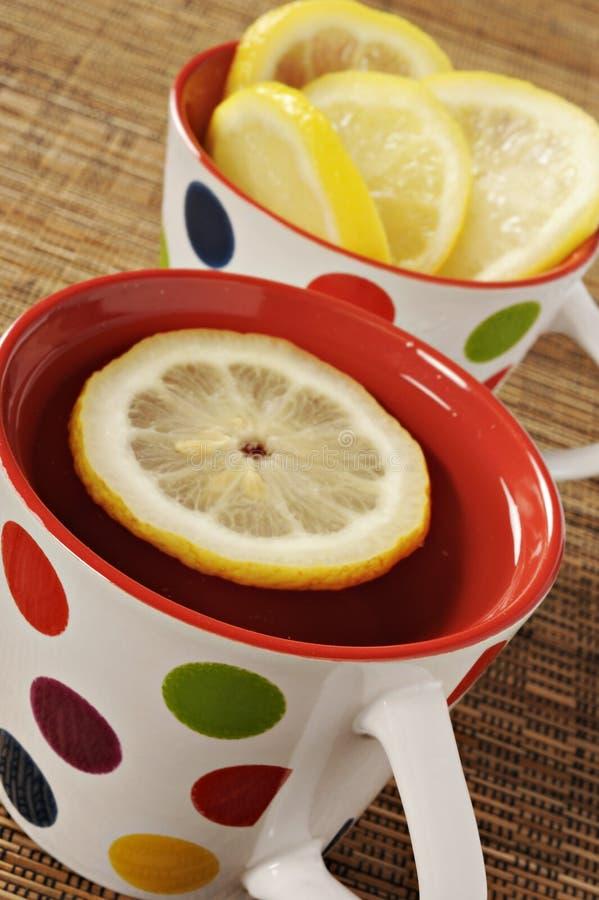Здоровый травяной чай стоковые изображения