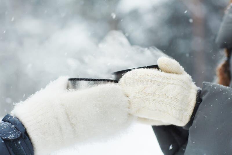 Здравица зимы стоковое изображение