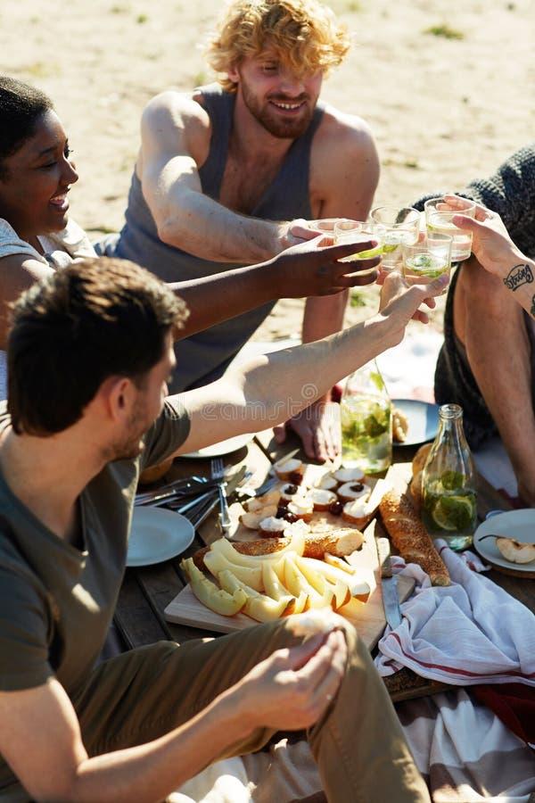 Здравица на пикнике стоковое изображение rf
