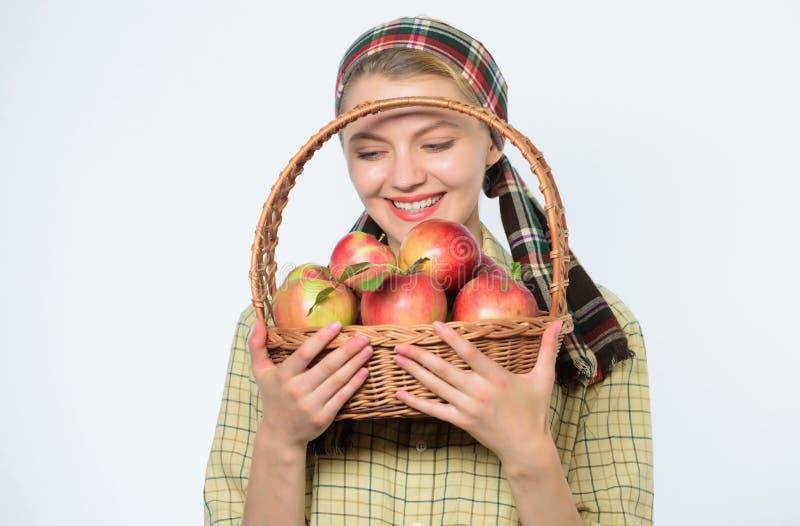 Здравоохранение и питание витамина Идеальное яблоко t Диета яблока начала Женщина любит естественные плоды Фермер стоковые фото