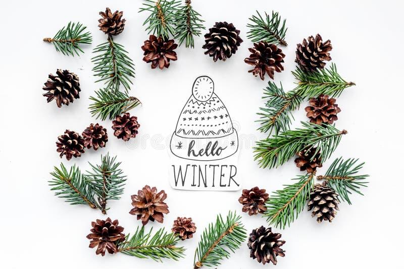 Здравствуйте! литерность руки зимы с шляпой Картина зимы с елевой ветвью и конусы на белом взгляд сверху предпосылки стоковая фотография