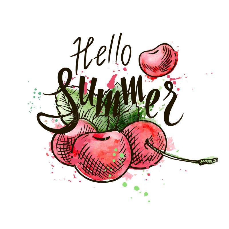Здравствуйте надпись лета на предпосылке вишен вишни иллюстрация вектора