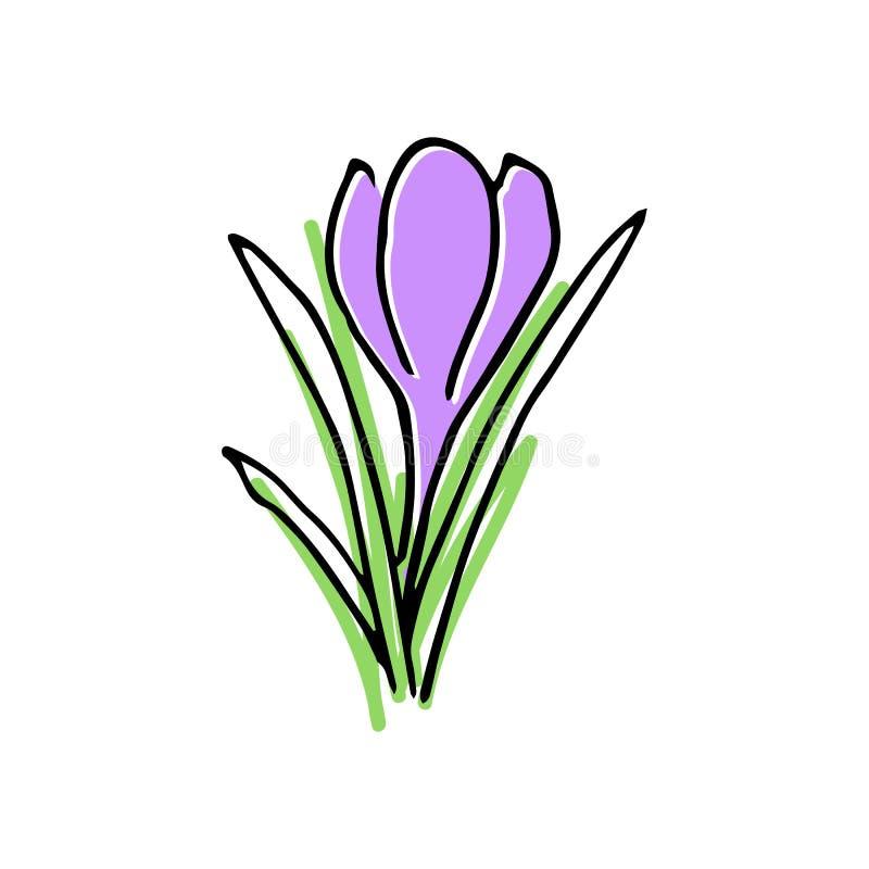 Здравствуйте! покрашенный весной комплект эскиза первые цветки иллюстрация штока