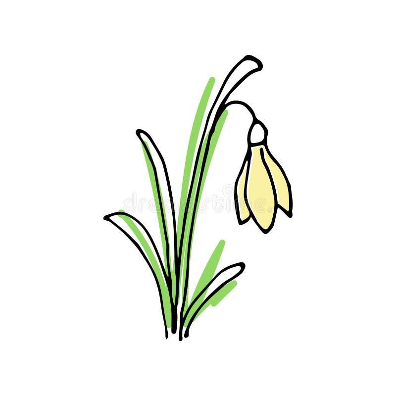Здравствуйте! покрашенный весной комплект эскиза первые цветки иллюстрация вектора