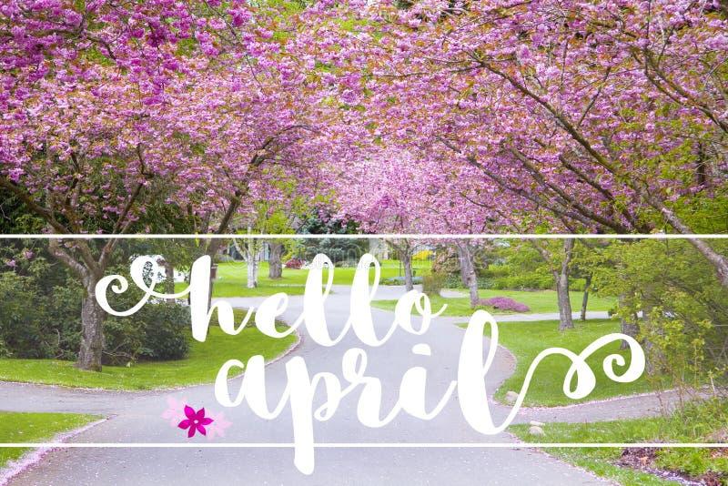 Здравствуйте! сообщение в апреле на тихой проселочной дороге выровнялось с весной fl стоковые изображения