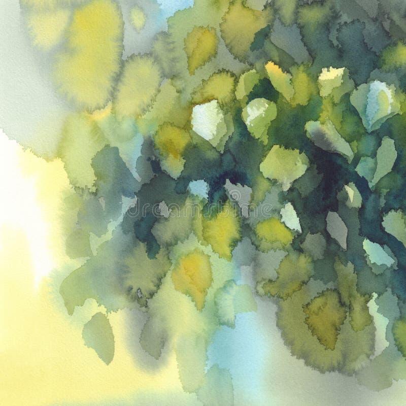 Зеленая береза выходит предпосылка акварели иллюстрация вектора