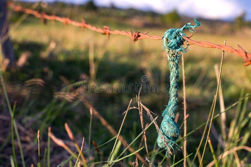 Зеленая веревочка вися от заржаветой связанной проволокой колючки стоковая фотография rf