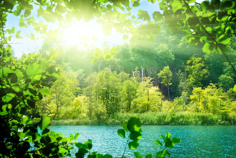 зеленая вода озера стоковое фото rf