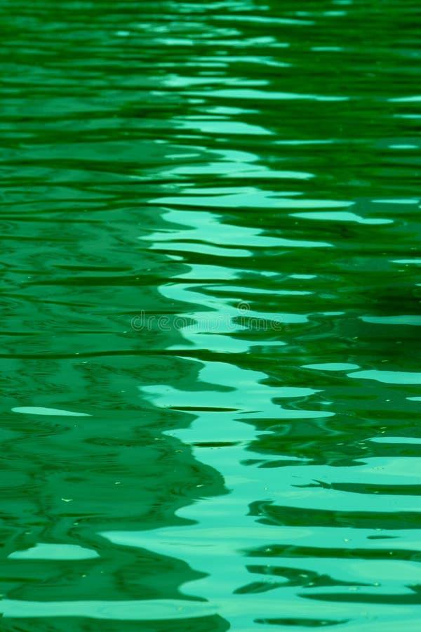 зеленая вода стоковые фото