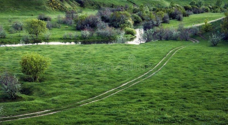 Зеленая долина с промоиной стоковые фото