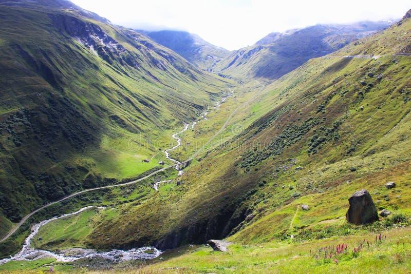 зеленая долина Швейцарии стоковое фото rf