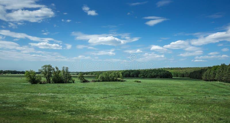 зеленая долина стоковая фотография rf