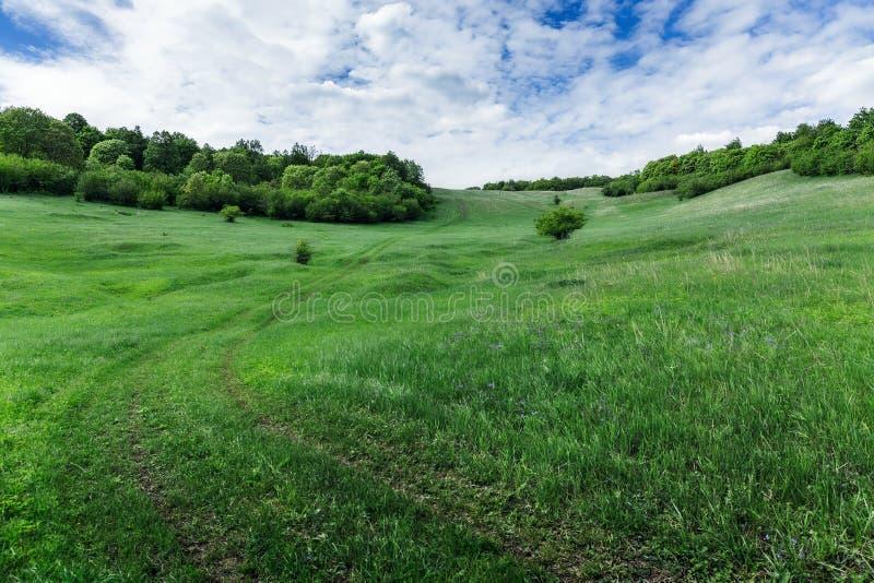 зеленая долина стоковое фото