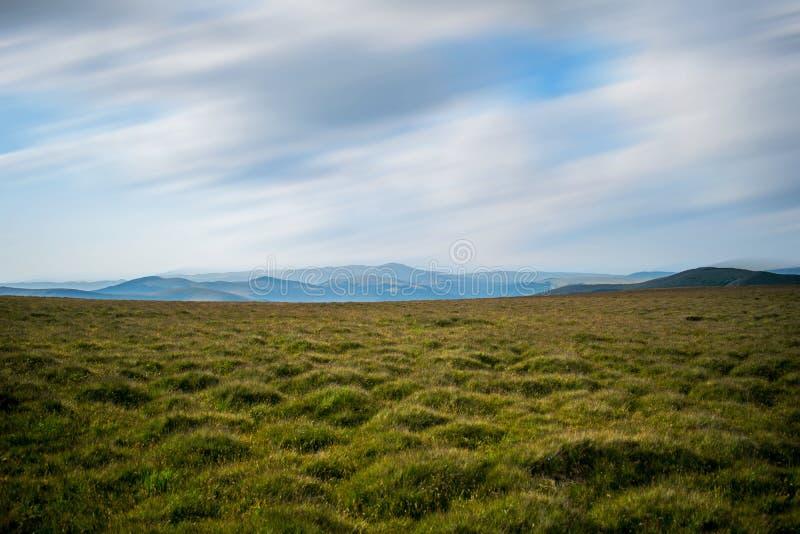 Зеленая и желтая трава покрыла злаковик, в горной области Горы можно увидеть где-то в расстоянии стоковое изображение rf