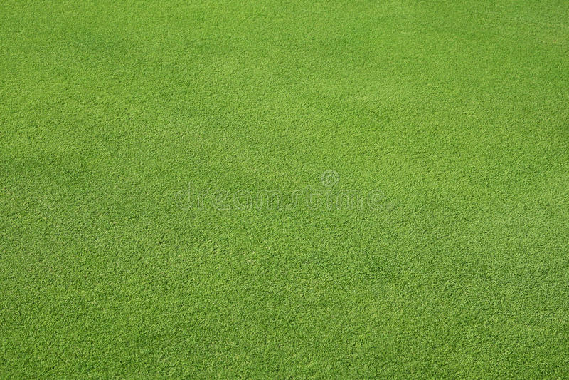 зеленая лужайка совершенная стоковая фотография rf