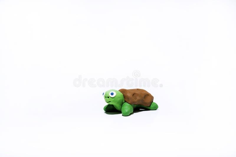 Зеленая малая черепаха стоковые фотографии rf