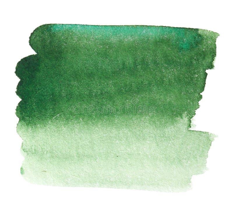 Зеленая нарисованная рука выплеска акварели стоковое изображение rf