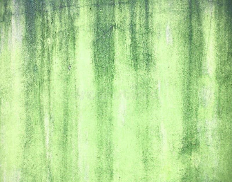 Зеленая несенная текстура стены гипсолита стоковые изображения