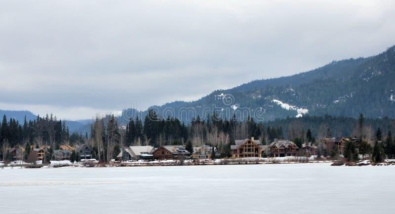 Зеленая открытка зимы озера стоковое фото