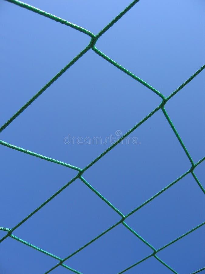 зеленая сеть