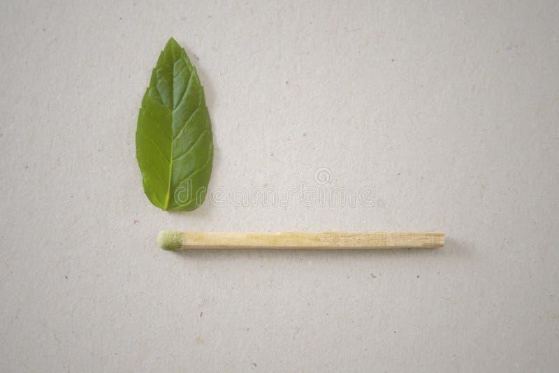 Зеленая спичка с зеленым пламенем стоковая фотография