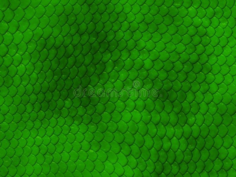 зеленая текстура змейки кожи стоковое изображение