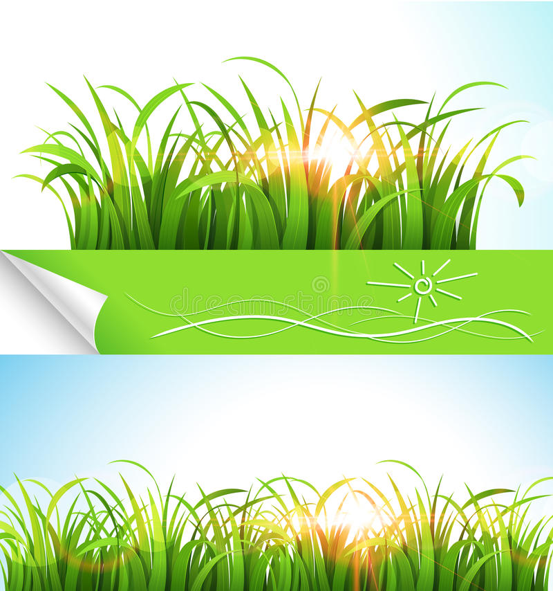 Зеленая трава иллюстрация штока