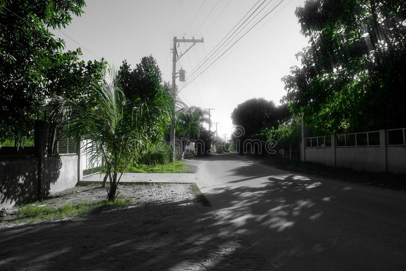 Зеленая улица тонов только стоковые изображения rf