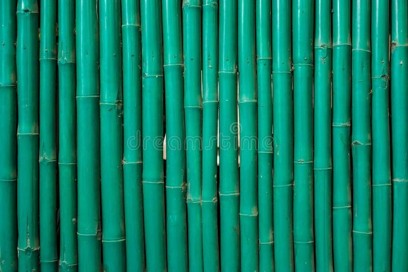 Зеленая bamboo картина стоковая фотография
