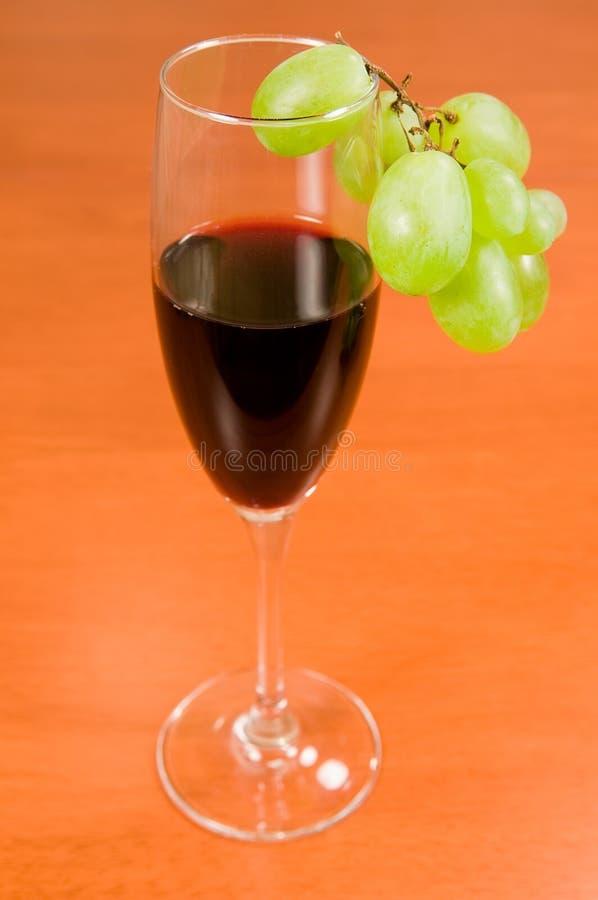 зеленое вино лозы стоковое фото rf