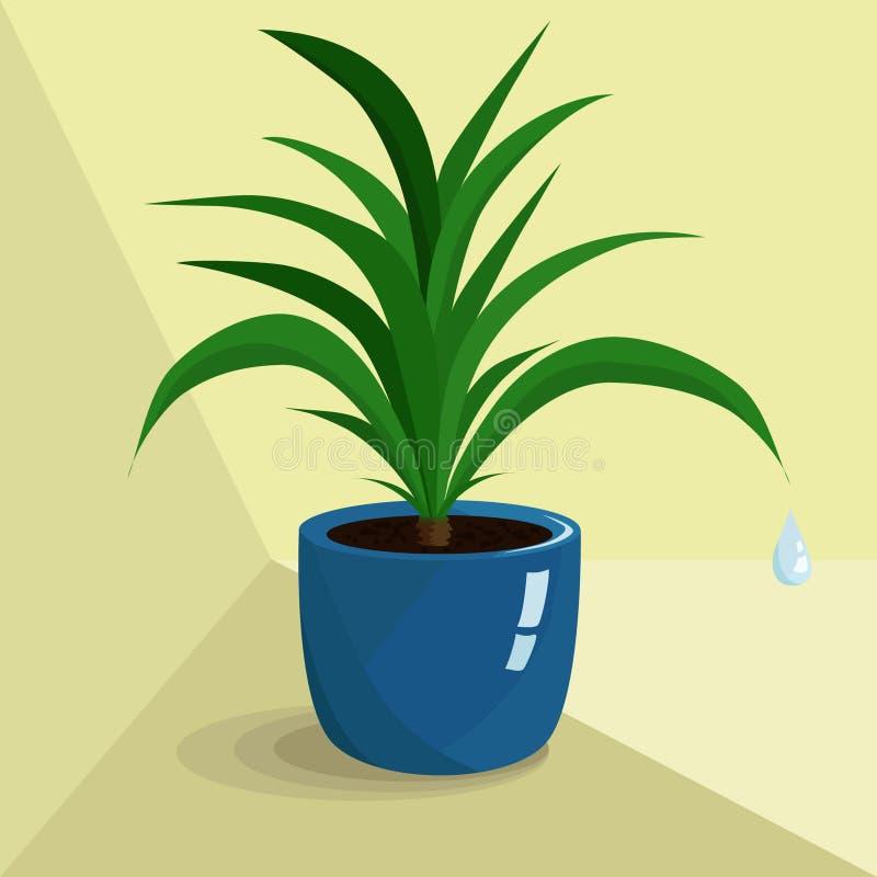 Зеленое комнатное растение в голубом баке иллюстрация штока
