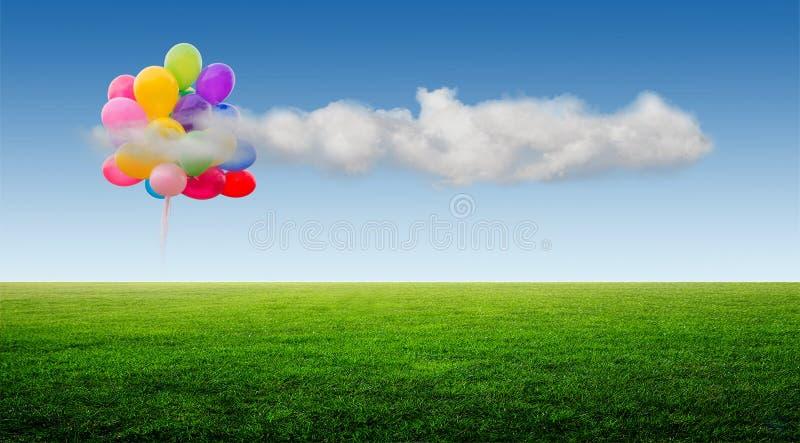 Зеленое поле и голубое небо стоковое фото