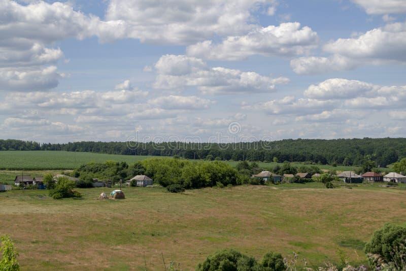 зеленое поле и голубое небо со светлыми облаками стоковое изображение rf