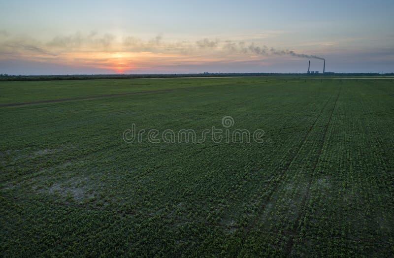 Зеленое поле и красочный заход солнца воздушные alps плавают вдоль побережья фото южный южный западный zealand острова новое стоковые изображения