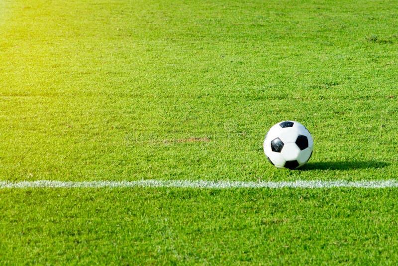 Зеленое поле на стадионе с солнцем и футбольными мячами стоковая фотография rf