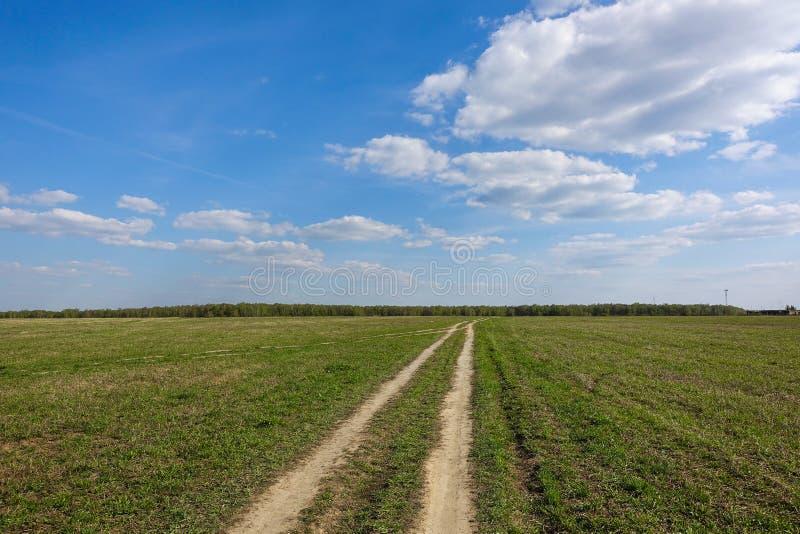 Зеленое поле с проселочной дорогой, и голубое небо с облаками Красивый сельский ландшафт стоковое фото