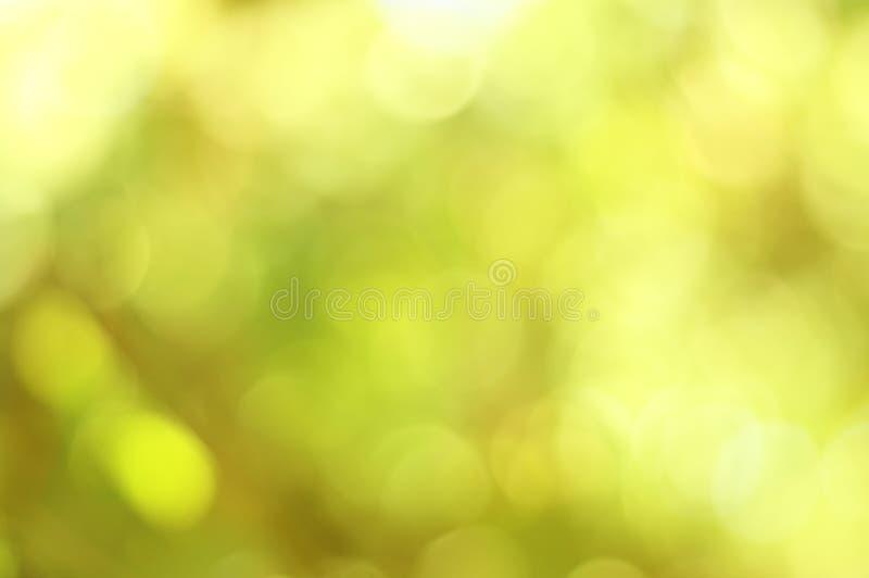 Зеленое bokeh из светов предпосылки фокуса стоковые изображения