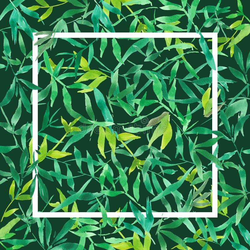 Зеленые бамбуковые листья с белой квадратной рамкой, иллюстрацией пре бесплатная иллюстрация