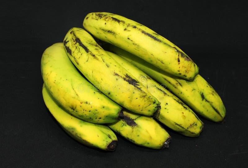 Зеленые бананы на предпосылке - свежие здоровые плоды стоковые изображения rf