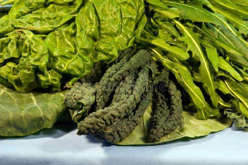 зеленые густолиственные смешанные овощи стоковые изображения rf