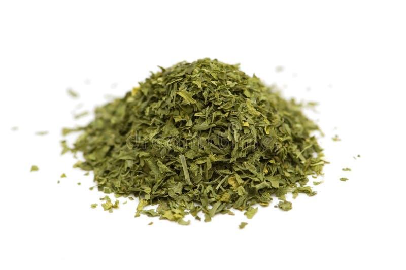зеленые изолированные травы стоковые фотографии rf
