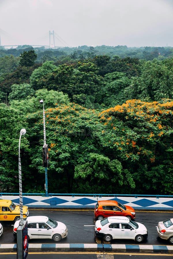 Зеленые и красные деревья лист в парке и автомобили на дороге сверху с  стоковое фото