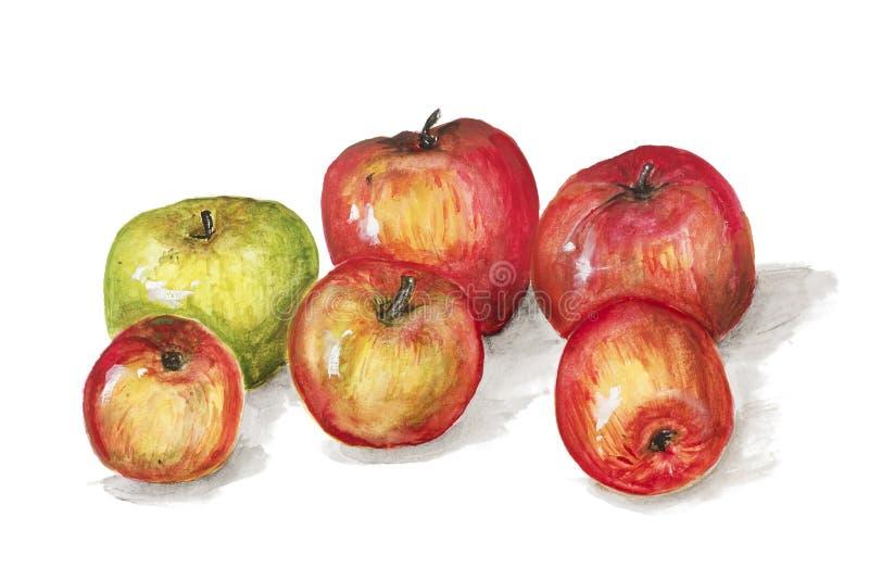 Зеленые и красные плодоовощи яблок иллюстрация штока