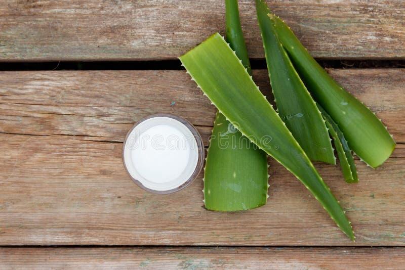 Зеленые листья завода vera алоэ и moisturizing сливк стоковая фотография