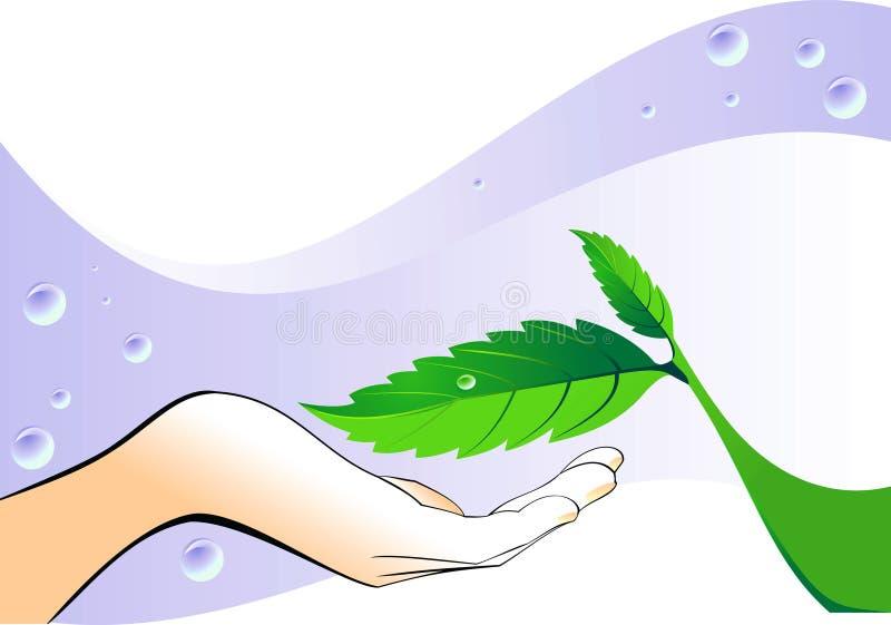 зеленые листья руки иллюстрация вектора