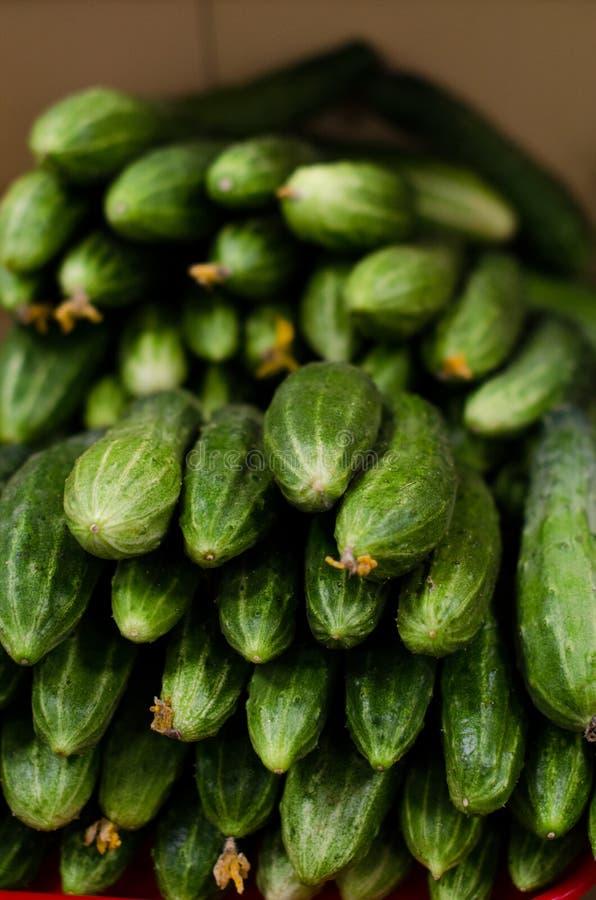 Зеленые огурцы в магазине на счетчике в коробке на рынке бакалеи стоковые фото