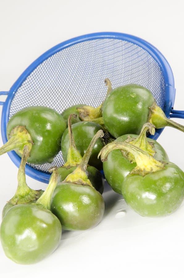 Зеленые перцы вишни стоковые фото