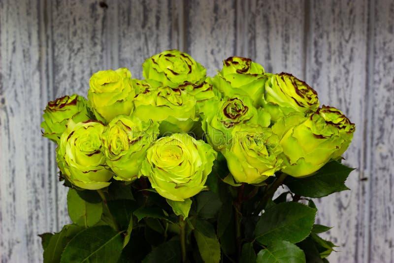 Зеленые розы в вазе металла на деревянной предпосылке стены стоковое изображение rf