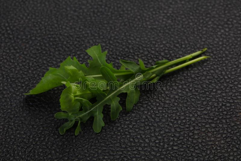 Зеленые свежие листья Ракеты стоковое фото rf